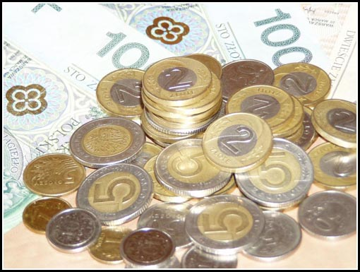 Polish Zloty Currency Notes Coins