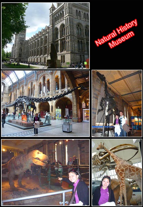 Natural History Museum copy
