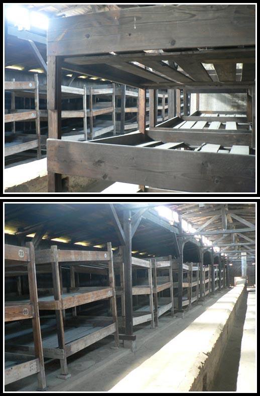Auschwitz-Birkenau Camp Beds