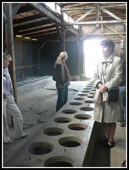 Auschwitz-Birkenau Camp Latrine-Toilet