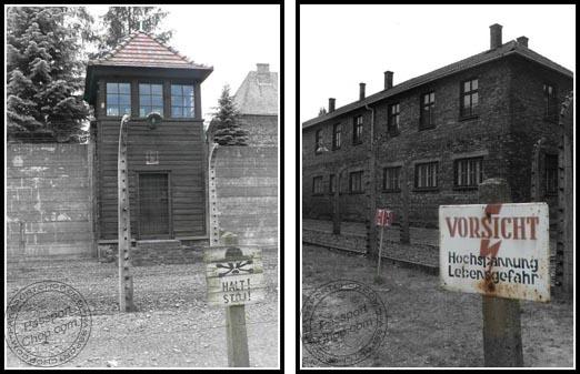 Auschwitz Electric Fence - Watchtower