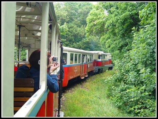 Gyermekvasut Children's Railway Train Line