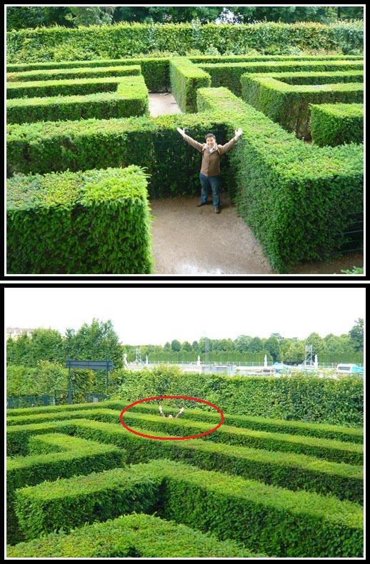 Lost in Schonbrunn Irrgarten Maze