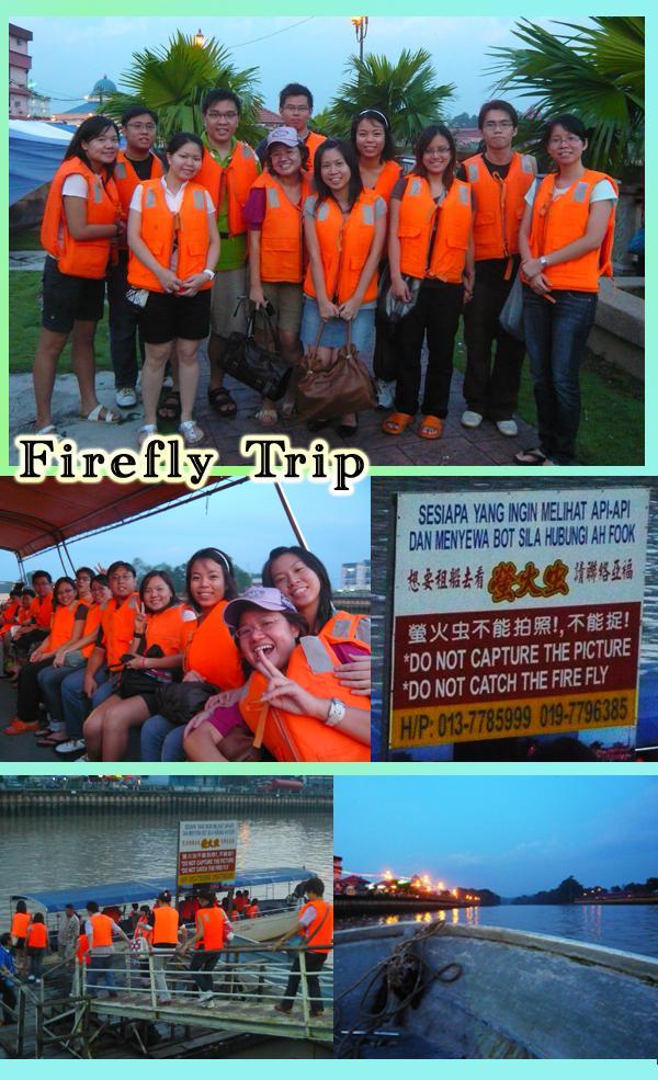 Desaru/Kota Tinggi Firefly Trip