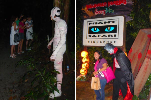 Night Safari Halloween Scary
