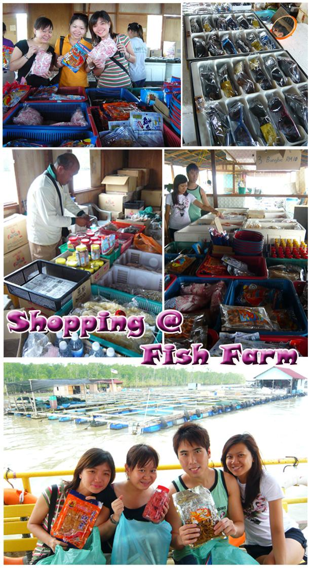 Shopping @ Fish farm