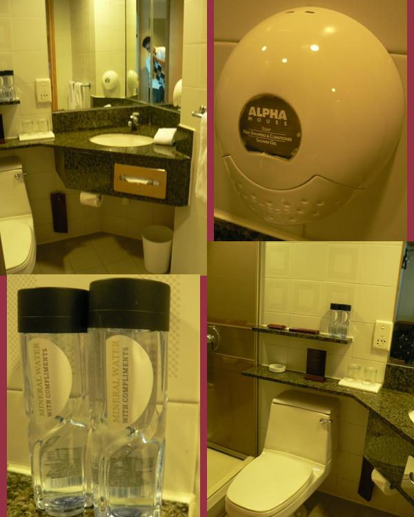 Stanford Hotel Toilet