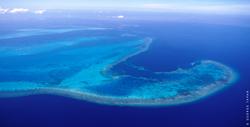 Apo Reef Cebu Pacific
