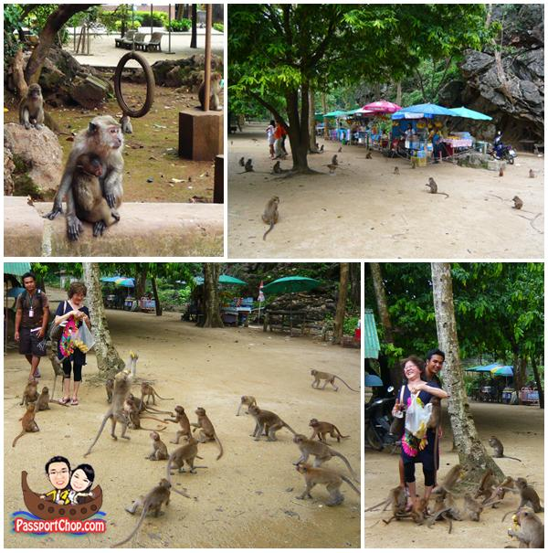 Monkeys at Suwan Khuha Cave Temple