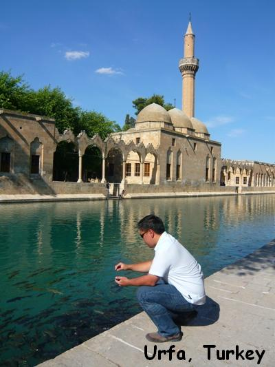 Urfa Turkey Abraham Sacred Pool Wishing