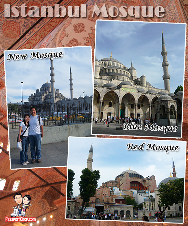 Blue Istanbul Mosque Red and New Mosque Turkey