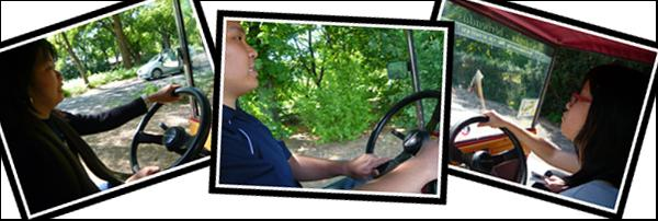 Driving Experience in Margaret Island
