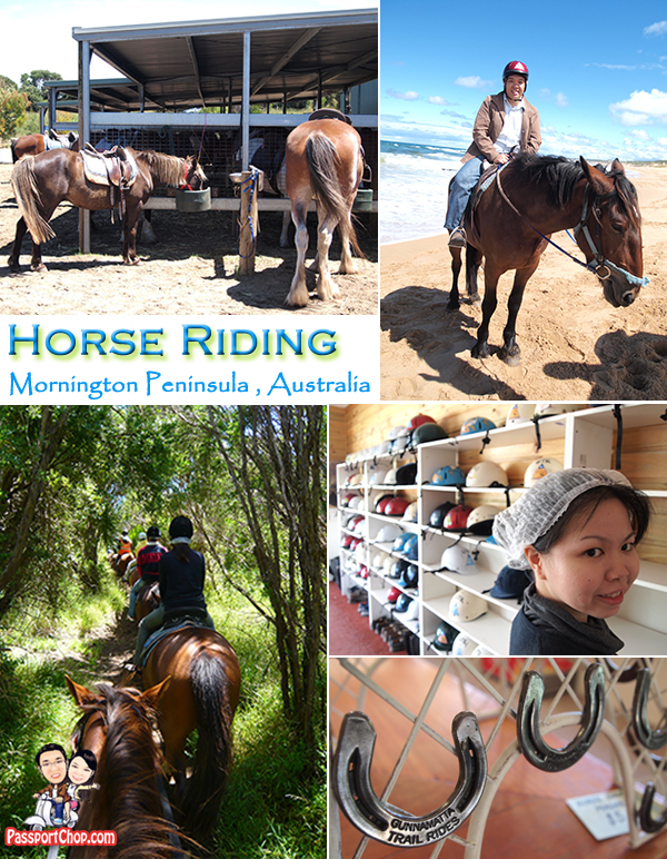 Mornington Peninsula Experience Bush and Beach Horseback Riding Bunyip Tours
