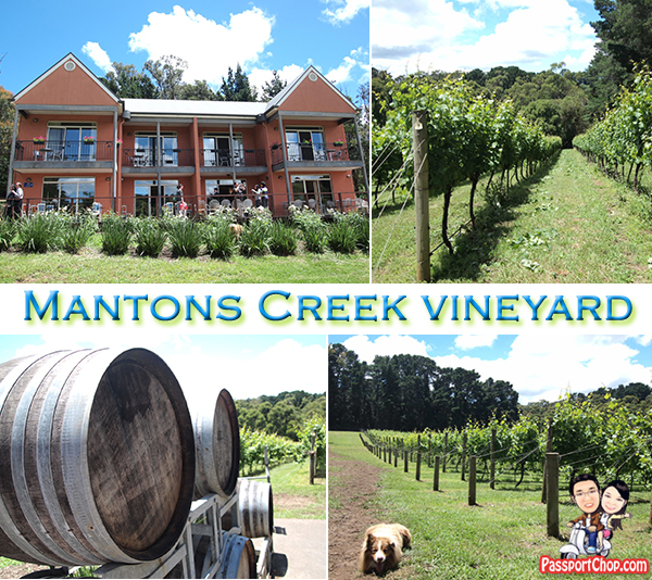 Mantons Creek Vineyard Organic Lunch Hero Dog