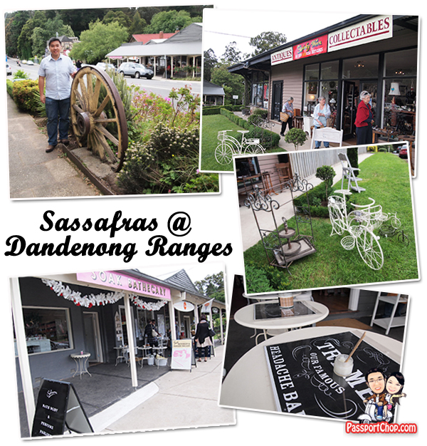 Sassafras Town Dandenong Ranges Old Charm Rustic Feel Little Miss Marples