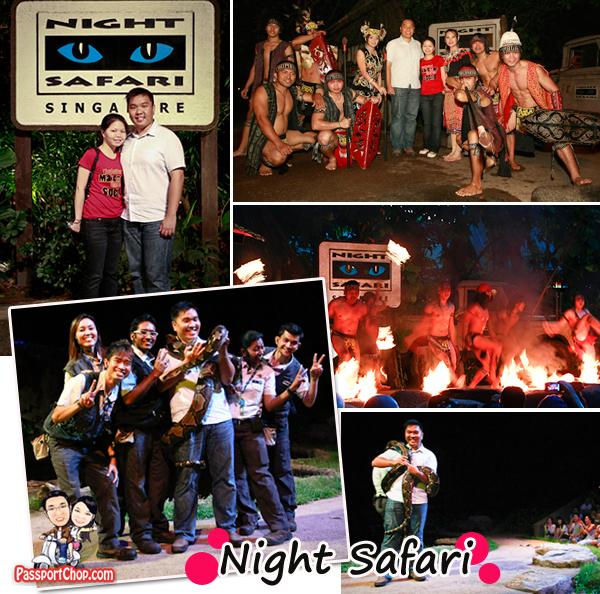 Night Safari Creatures of the Night show