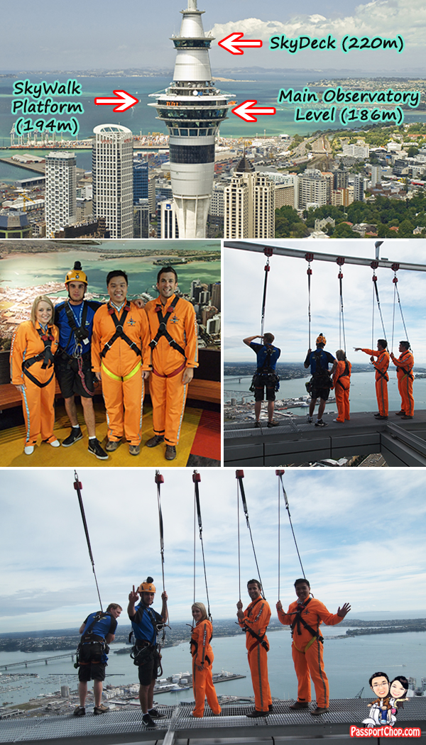 SkyWalk Challenge 194 Metres Above Ground at Sky Tower SkyJump