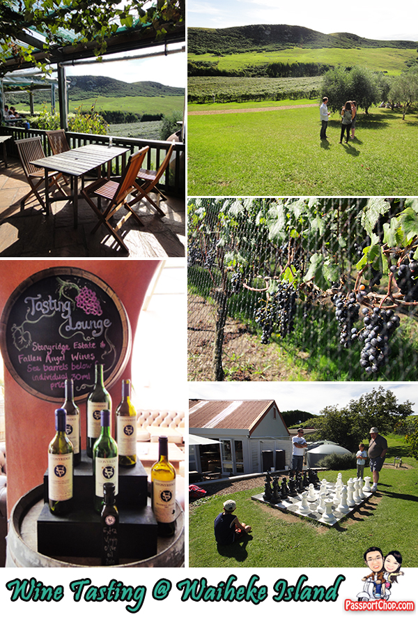 Waiheke Island Vineyard Wine Tasting Activity New Zealand Auckland