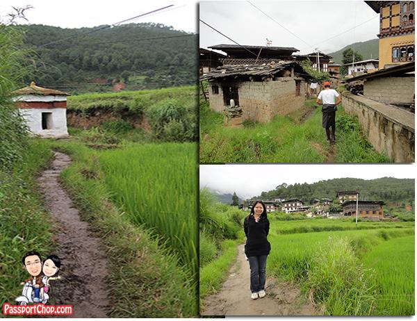 Chimi Lhakhang Punakha Bhutan Divine Madman Temple Fertility Phalluses Penis Effigy Drawings Hike to Temple