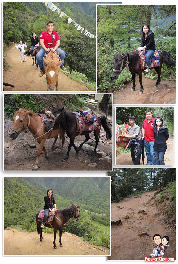 Horseback Riding on Trail to Taktsang Palphug Monastery Tiger's Nest Monastery Bhutan Paro Stage 1 and 2 Climb