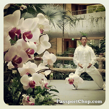 Early morning Tai-chi ShangriLaHotels at the Garden Wing Shangri-la Singapore #LovingtheMoment staycation
