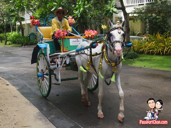 Horse Ride Tartanilla caritela karitela kalesa calesa shuttle Plantation Bay Resort Lagoon Side Water's Edge House Philippines Cebu