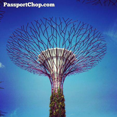 Gardens by the Bay Singapore SuperTree The Ritz Carlton Marina Bay Discovery Trail