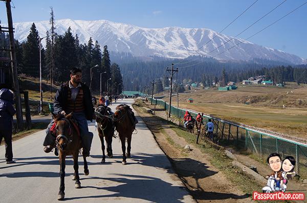 Gulmarg India Srinagar Walk or Pony Ride to Gulmarg Gondola Avoid Touts Ponywallas