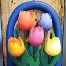 Amsterdam Tulip Souvenir Shopping