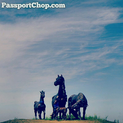 Horse Statue Grassland Experience
