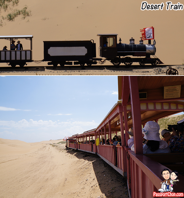 Resonant Bay Desert Train