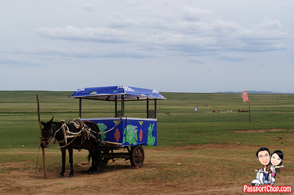 Xilamuren Grassland 希拉穆仁草原 蒙古人圣地度假村 Inner Mongolia Grassland Meng Gu Ren Sheng Di Mongolian Sacred Land Resort Shangri-La Huhhot Grassland Experience Mongolian horse carriage