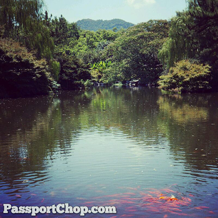 Hangzhou West Lake Tour