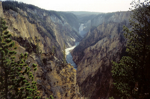 Artist-Point-Yellowstone