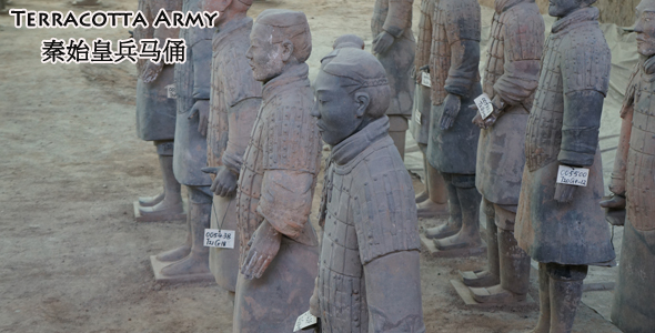 Be Awed by the Majestic Displays of Terracotta Army 秦始皇兵马俑 at the Warriors Museum