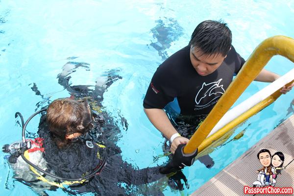dolphin-trek-rws-diver
