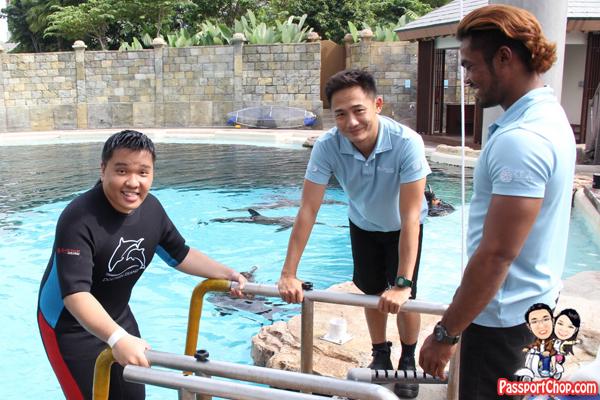 dolphin-trek-rws-island