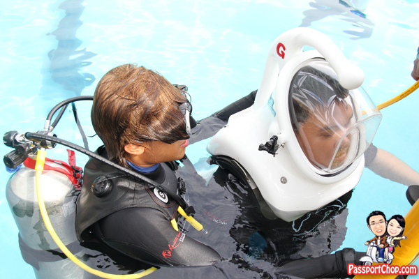 dolphin-trek-rws-scuba-diving