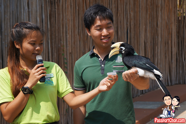 river-safari-animal-encounter-show