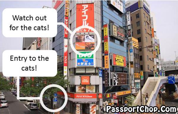 neko-maru-cat-cafe-ueno-tokyo-location