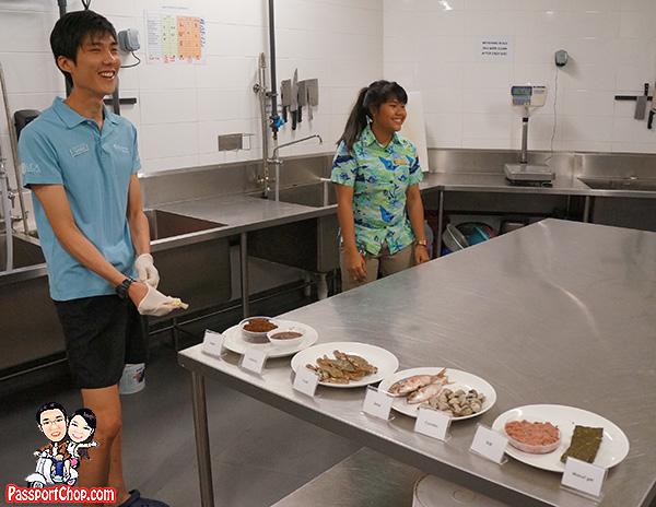 manta-captain-behind-scene-sea-aquarium-feeding
