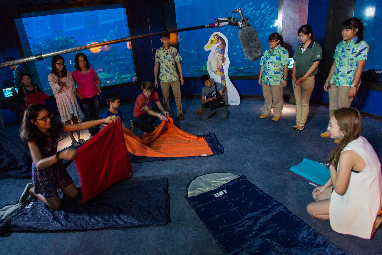 ocean-dreamer-sleeping-bag-aquarist