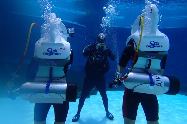Sea Trek Dolphin Trek Resorts World Sentosa Dolphin Island Adventure Cove