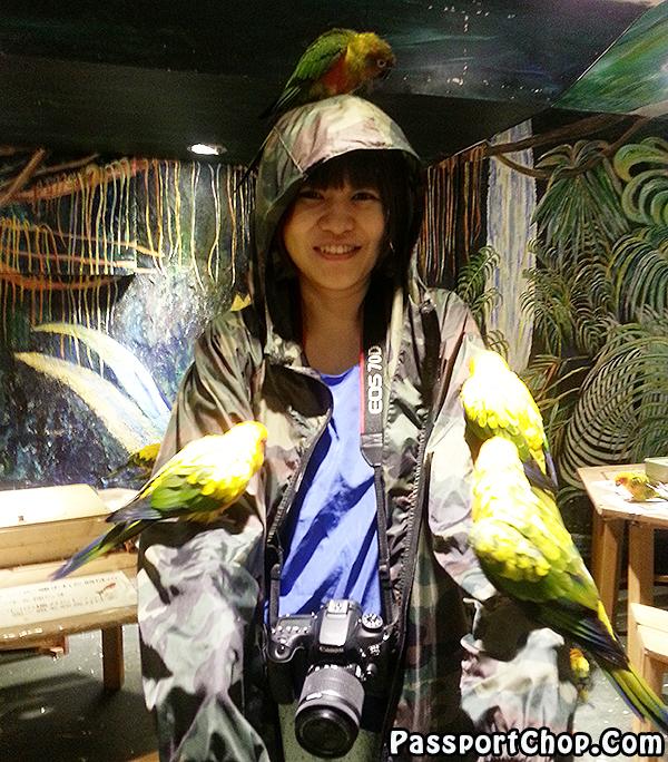 Tori-no-iru-Kafe-Asakusa-parrot-swarm