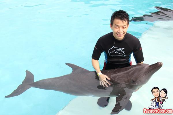 dolphin-discovery-trek-rws