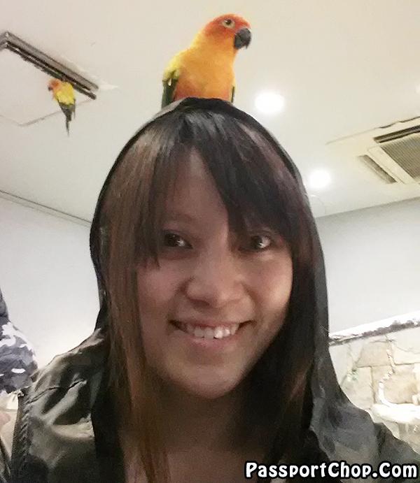 selfie-parrot-cafe-japan-tokyo