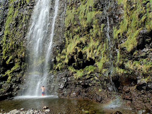 pipiwai-trail-maui-hawaii
