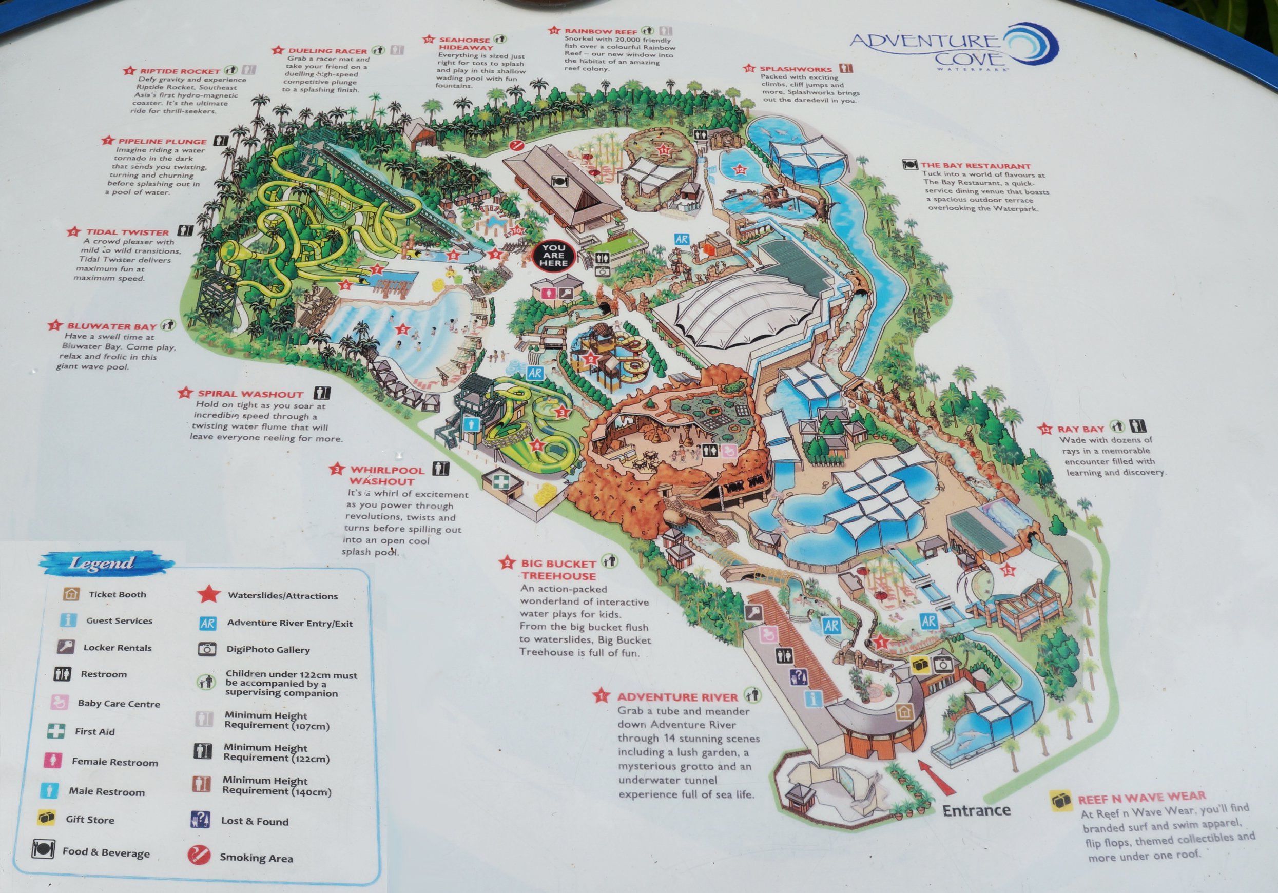 6 tips to beat the queues at adventure cove waterpark at resorts adventure cove map guide avoid crowds fast track gumiabroncs Gallery