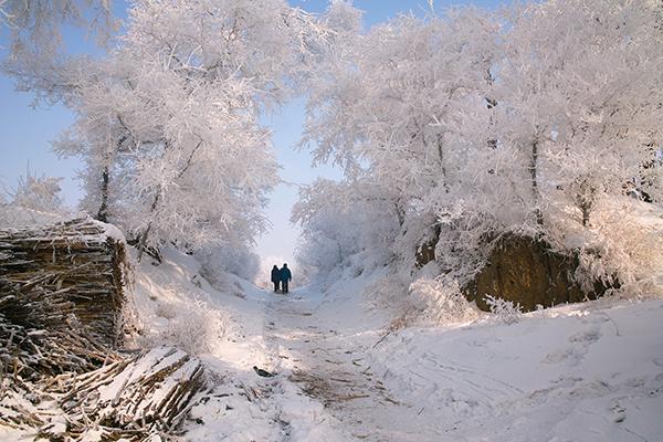 harbin jilin the icy north jetbay tour