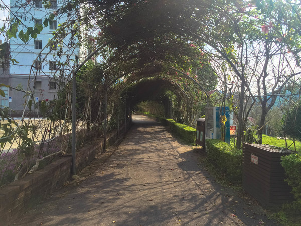 dongshih forest garden review